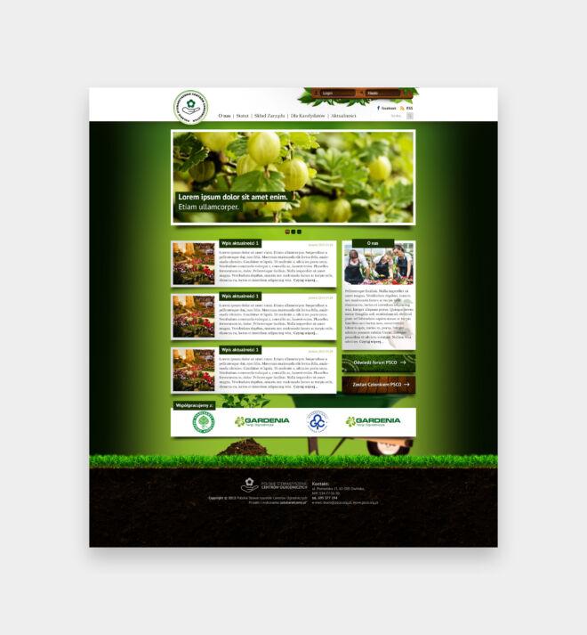 projekt strony internetowej zdrowa zywnosc